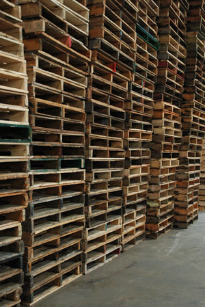 Stacks of Recycled Pallets